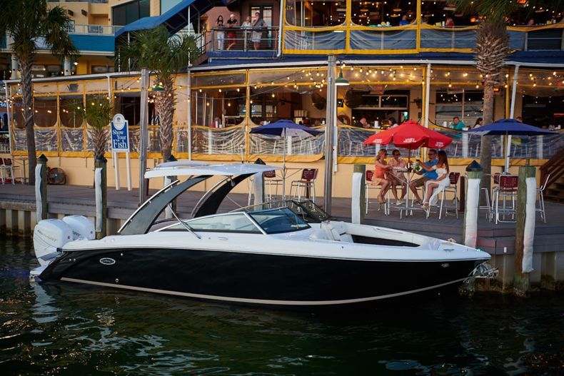 Thumbnail 11 for New 2021 Cobalt 30SC boat for sale in West Palm Beach, FL